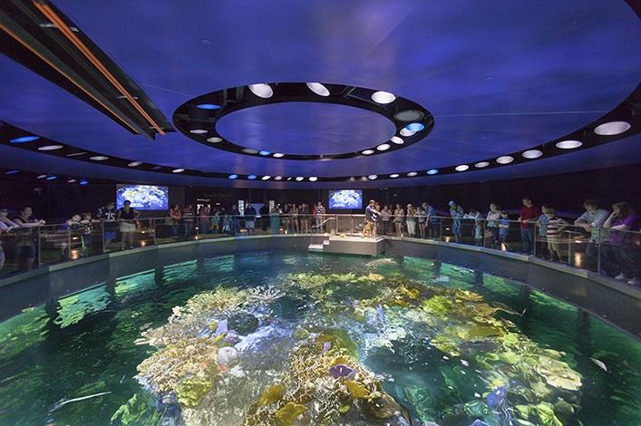 New England Aquarium in Boston