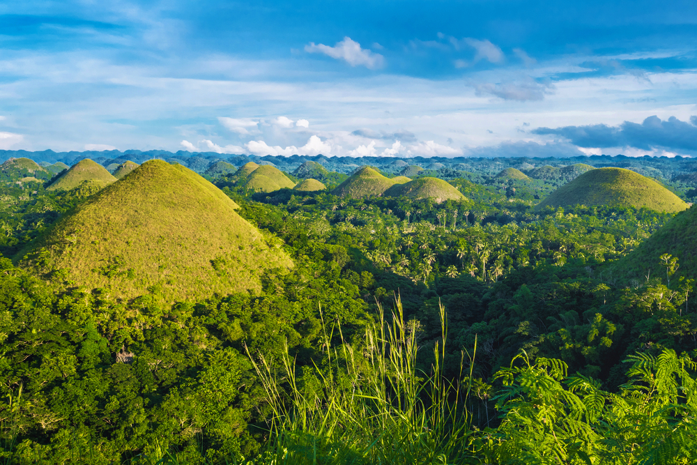 chocolate hills of bohol island in the philipines