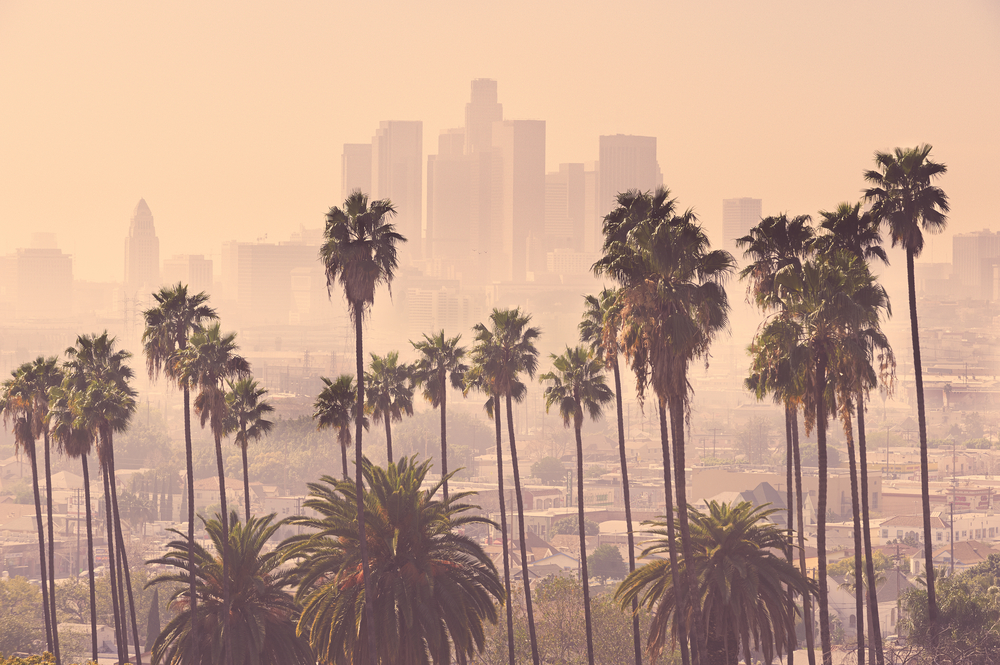 los angeles destination in November