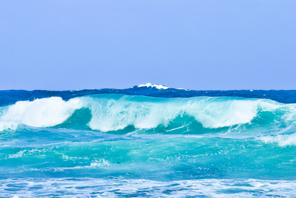 barbados_surf_duppies