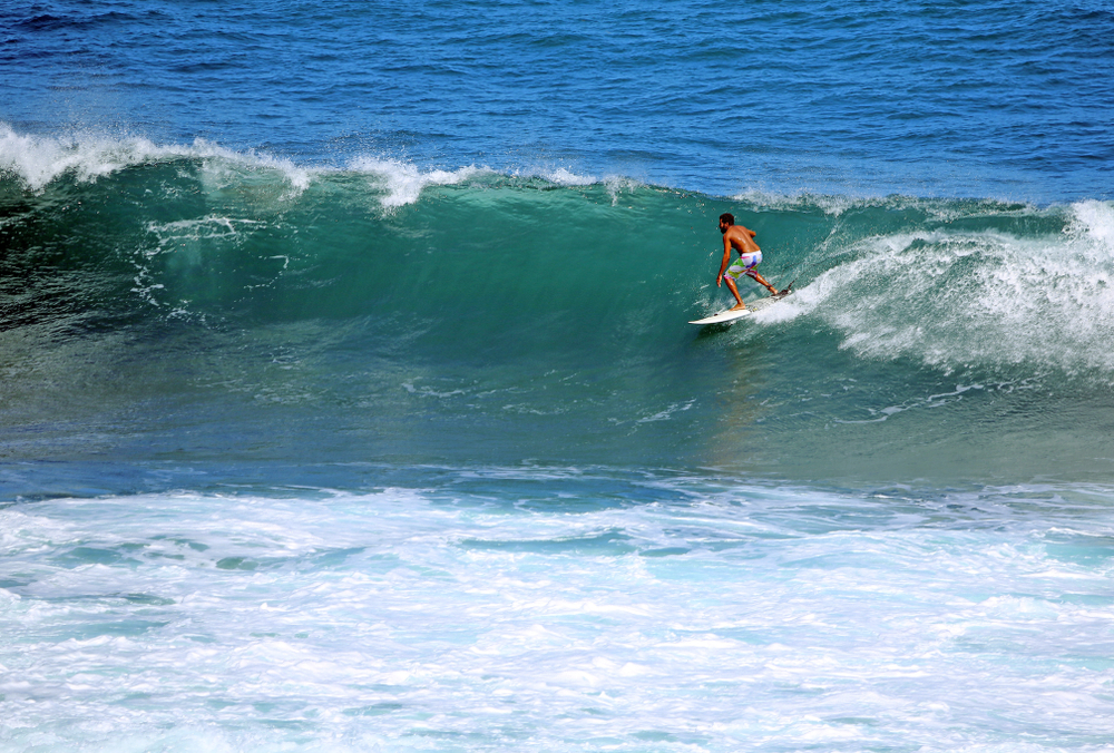barbados_surf_soup_bowl
