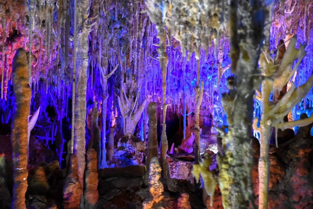 majorca_caves_porto_cristo_ham