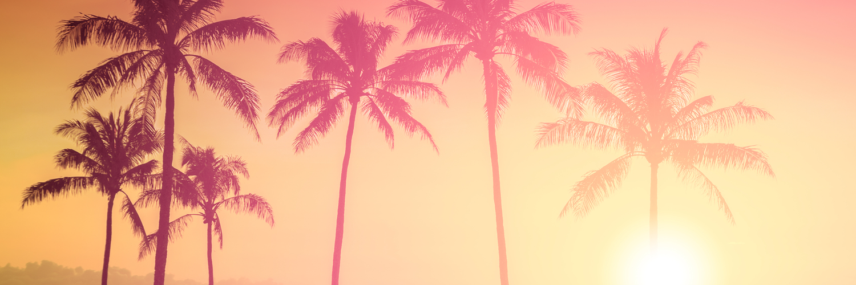 sunset415467832